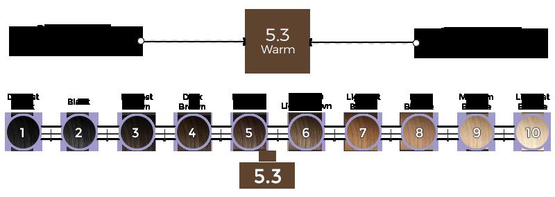 5-3-modena-brown