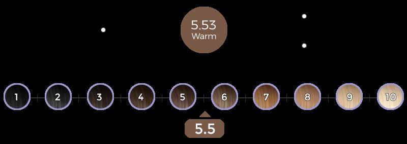 5-53-verona-brown