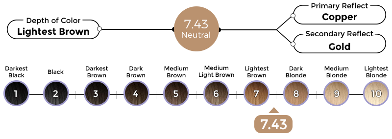 7-43-tuscany-brown