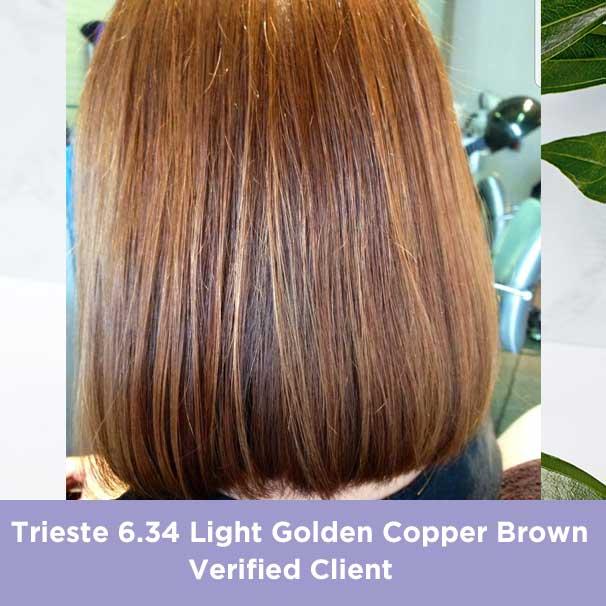 Trieste Light Golden Copper Brown