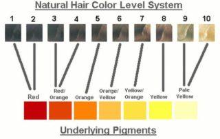 natural contributing pigment