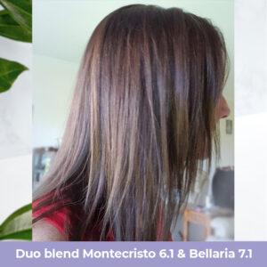 Duo-blend-6.1-7.1.jpg